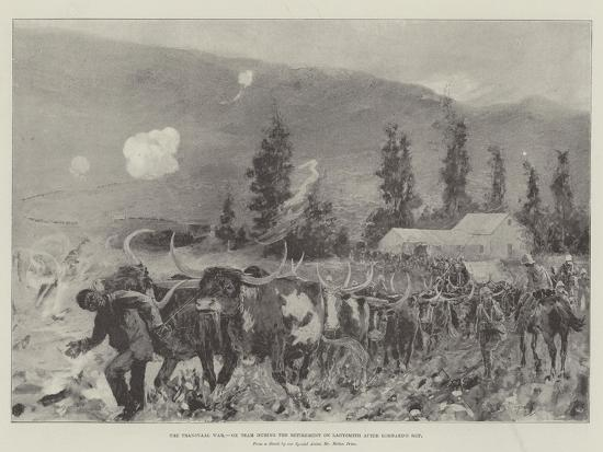 henry-charles-seppings-wright-the-transvaal-war-ox-team-during-the-retirement-on-ladysmith-after-lombard-s-kop