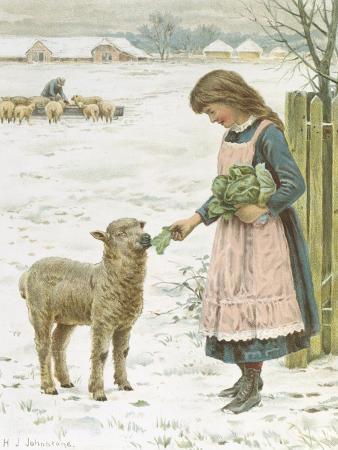 henry-johnstone-christmas-treat