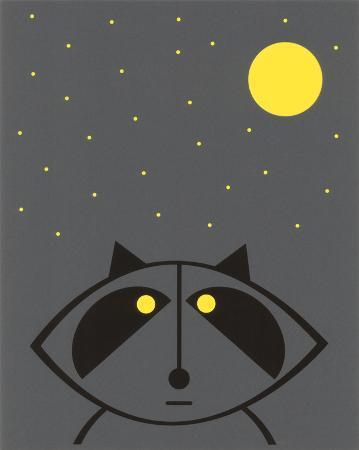 hero-design-raccoon-glow-in-the-dark