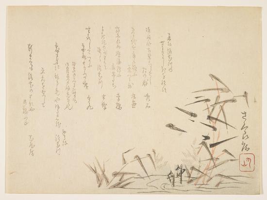 herons-and-reeds