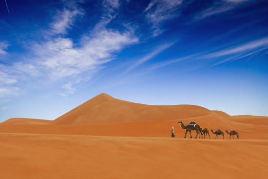hesham-alhumaid-desert-life