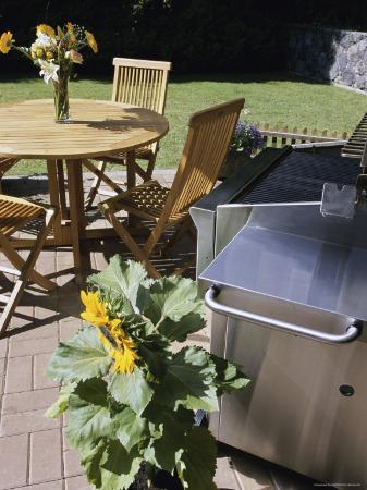 high-angle-view-of-a-potted-plant-near-a-barbecue-grill