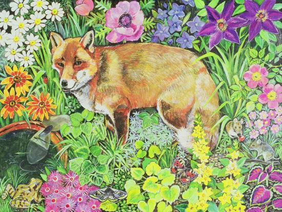 hilary-jones-the-barnet-fox