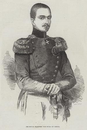 his-royal-highness-the-duke-of-genoa