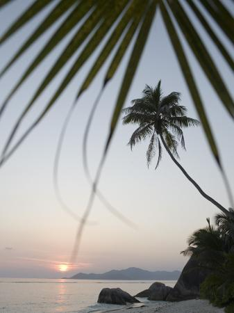 holger-leue-coconut-tree-sunset-silhouette-at-pte-source-d-argent