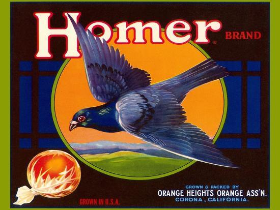 homer-pigeon-label