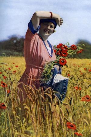 horace-walter-nicholls-the-english-rose-c1922
