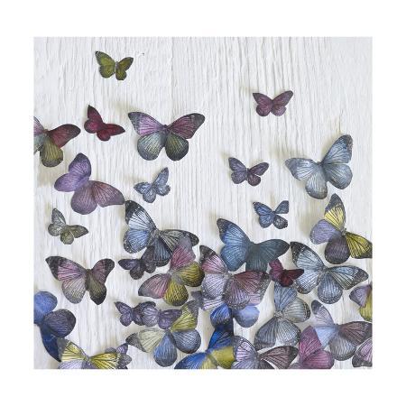 howard-shooter-butterfly-random