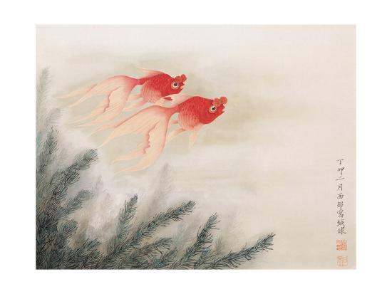 hsi-tsun-chang-twin-fish
