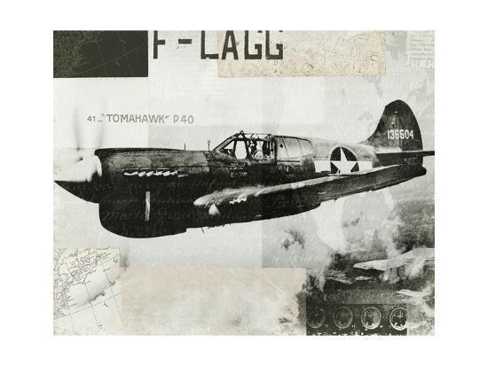 hugo-wild-wings-collage-ii