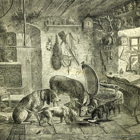 hunt-austria-dogs-1891
