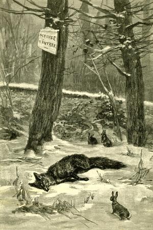 hunting-fox-austria-1891