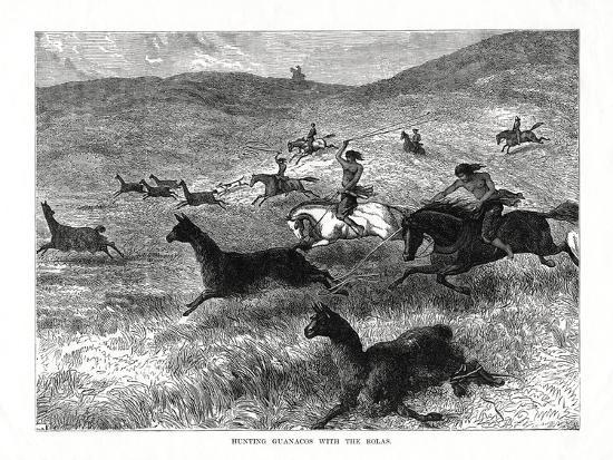 hunting-guanacos-with-the-bolas-south-america-1877