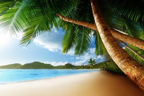 iakov-kalinin-sunset-on-beach-anse-takamaka-of-mahe-island-seychelles