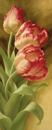 igor-levashov-spring-s-parrot-tulip-i