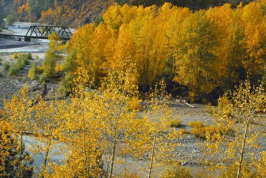 ike-leahy-hood-river-rr-bridge