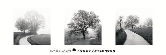 ily-szilagyi-foggy-afternoon