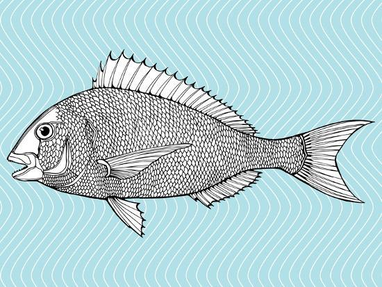 in-art-stylized-fish-sea-fish-dorado-black-and-white-drawing-by-hand-line-art-tattoo-doodle-graphic