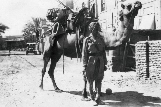 indian-camel-trooper-baghdad-1918