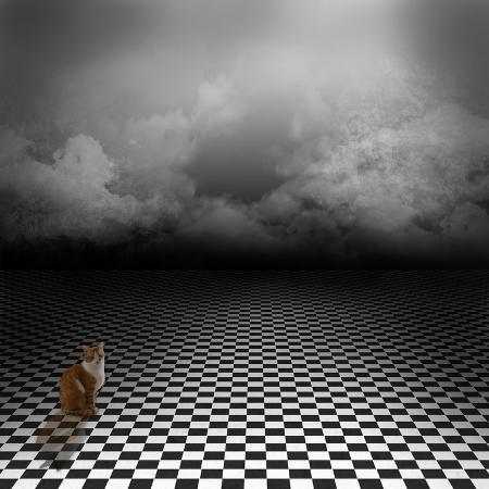 ingalinder-ginger-cat-sitting-in-empty-dark-psychedelic-image-with-black-and-white-checker-floor