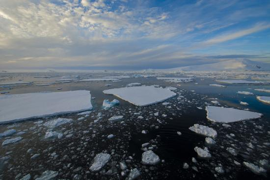 inger-hogstrom-antarctica-near-adelaide-island-the-gullet-ice-floes-and-brash-ice