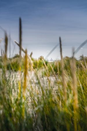 ingo-boelter-the-netherlands-frisia-terschelling-dunes-beach-sea