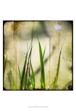 ingrid-blixt-green-ii