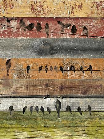 irena-orlov-birds-on-wood-i