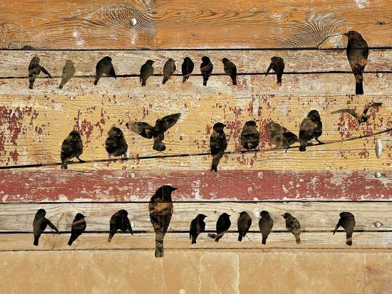 irena-orlov-birds-on-wood-v