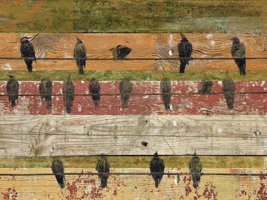 irena-orlov-birds-on-wood-vi