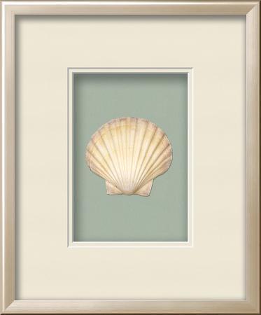 irish-deep-shell-shadowbox-seafoam