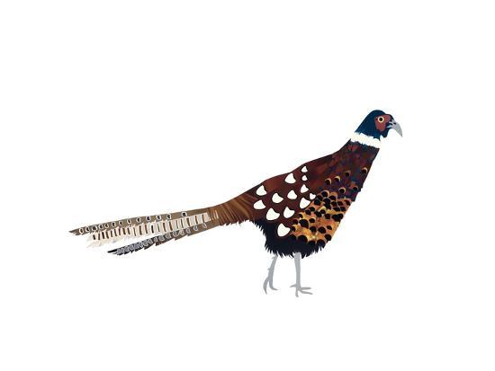 isobel-barber-pheasant-2013