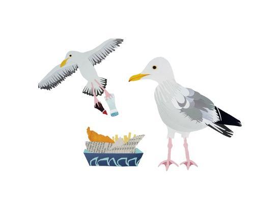 isobel-barber-seagulls-2014