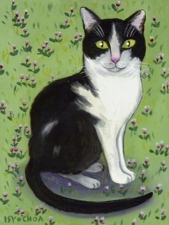 isy-ochoa-vincent-le-chat