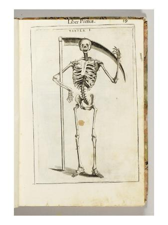 italian-school-a-skeleton-holding-a-scythe-in-the-style-of-a-grim-reaper