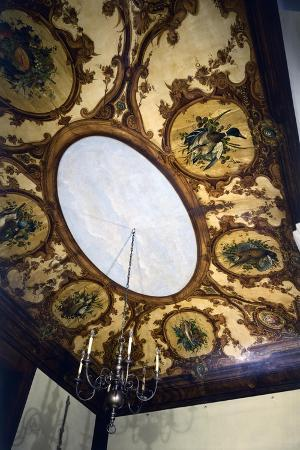 italy-florence-ceiling-of-dining-room-of-casa-siviero