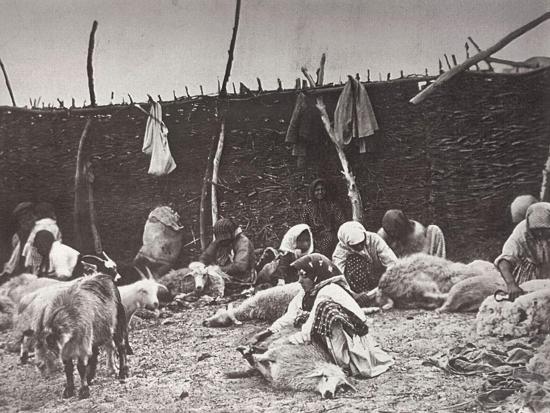ivan-boldyrev-sheep-shearing-russia-c1875-c1877
