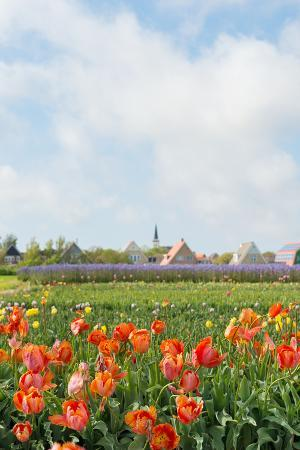 ivonnewierink-small-village-den-hoorn-with-white-church-at-dutch-wadden-island-texel
