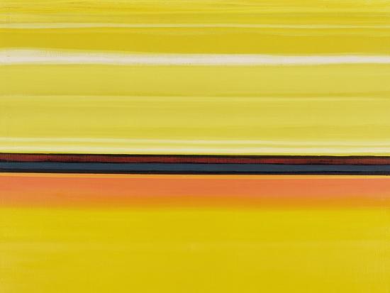 izabella-godlewska-de-aranda-colour-energy-13