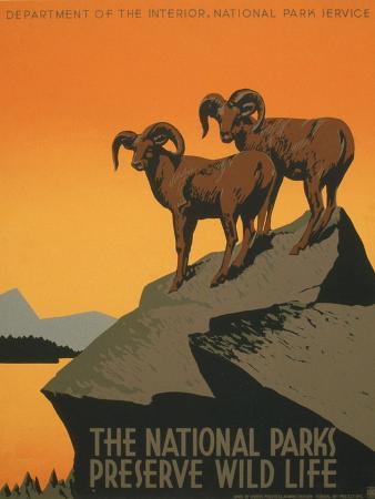 j-hirt-national-parks