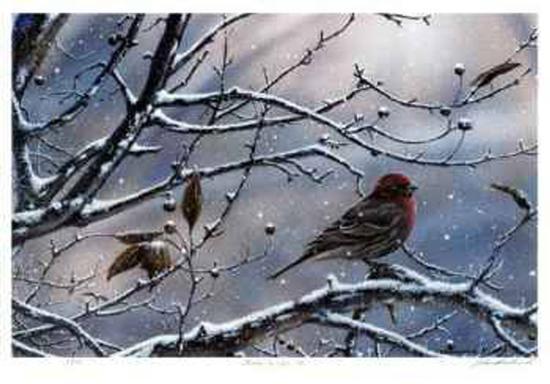 j-vanderbrink-winter-is-upon-us