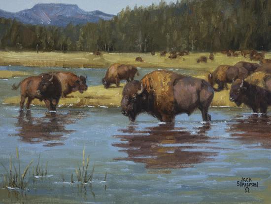 jack-sorenson-buffalo-crossing