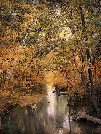 jai-johnson-autumn-riches-2