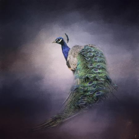 jai-johnson-peacock-11