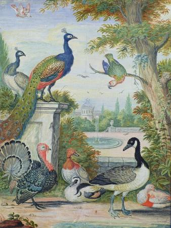 jakob-bogdany-exotic-birds-and-domestic-fowl-in-a-picturesque-park-early-18th-century