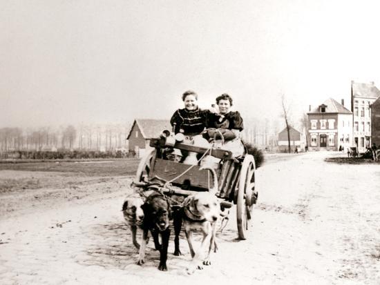 james-batkin-dogs-pulling-women-on-a-cart-antwerp-1898