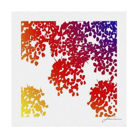 james-burghardt-floral-brights-iv