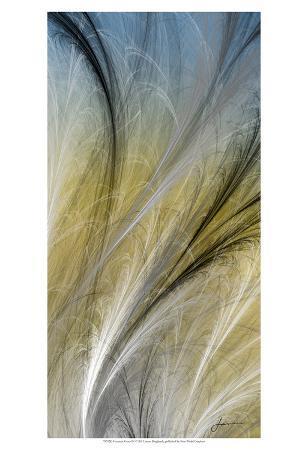 james-burghardt-fountain-grass-iv