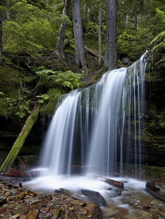 james-hager-fern-falls-coeur-d-alene-national-forest-idaho-panhandle-national-forests-idaho-usa