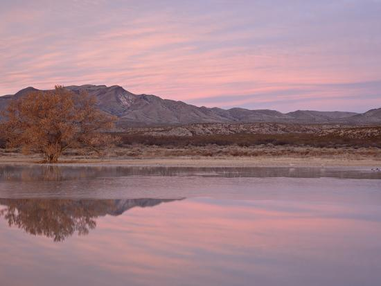 james-hager-pink-clouds-and-pond-at-sunrise-bosque-del-apache-national-wildlife-refuge-new-mexico-usa